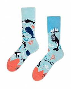 Many Mornings unisex Socken - Ocean Life (39-42) von Many Mornings