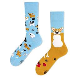 Many Mornings unisex Socken Playful Dog Regular (39-42) von Many Mornings